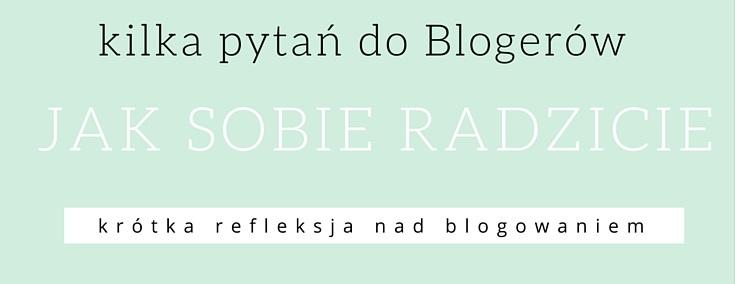 http://www.antosiewicz.edu.pl/kilka-pytan-do-blogera-mentora/ 